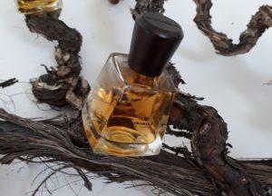 Wat houtparfums over je vertellen